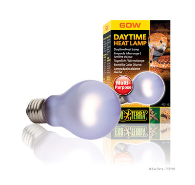 Pt2110 daytime heat lamp set