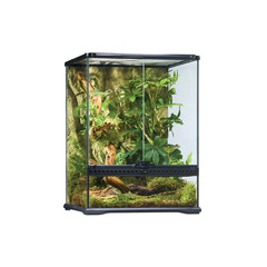 Террариум Exo Terra Natural Terrarium Small/Tall (45x45x60 см)
