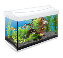 Tetra AquaArt LED Tropical 60л белый