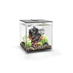 biOrb CUBE 30 LED (30 л)