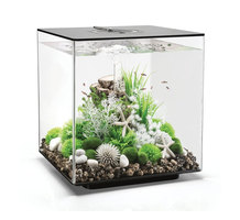 biOrb CUBE 60 LED (60 л)