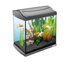 Tetra AquaArt LED Goldfish (30 л)